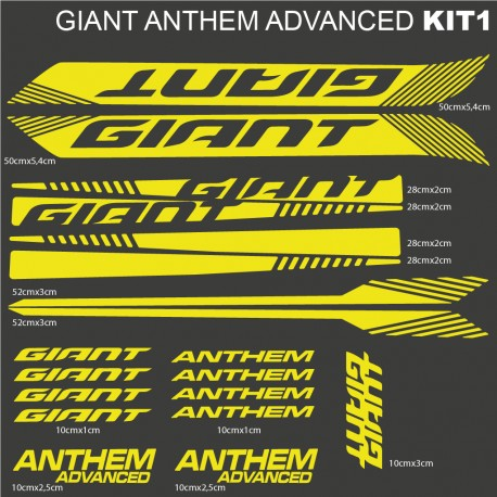 Giant anthem advanced kit1