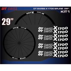 "DT SWISS X1700 SPLINE 29"" KIT1"