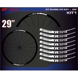"DT SWISS XR 331 29"" KIT1"
