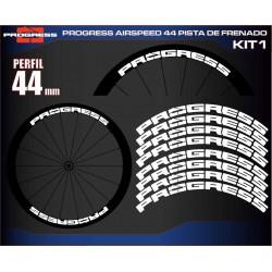 PROGRESS AIRSPEED 44 PISTA DE FREANADO KIT1
