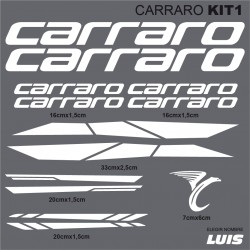 Carraro kit1
