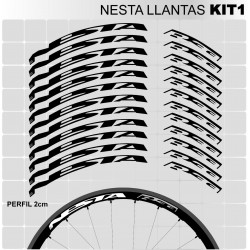Nesta Kit1